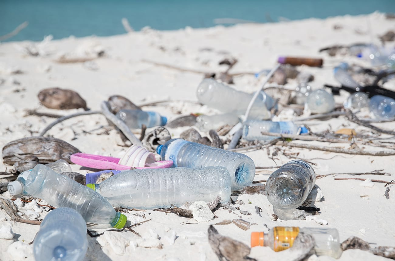THE OCEANS: DEATH BY PLASTIC