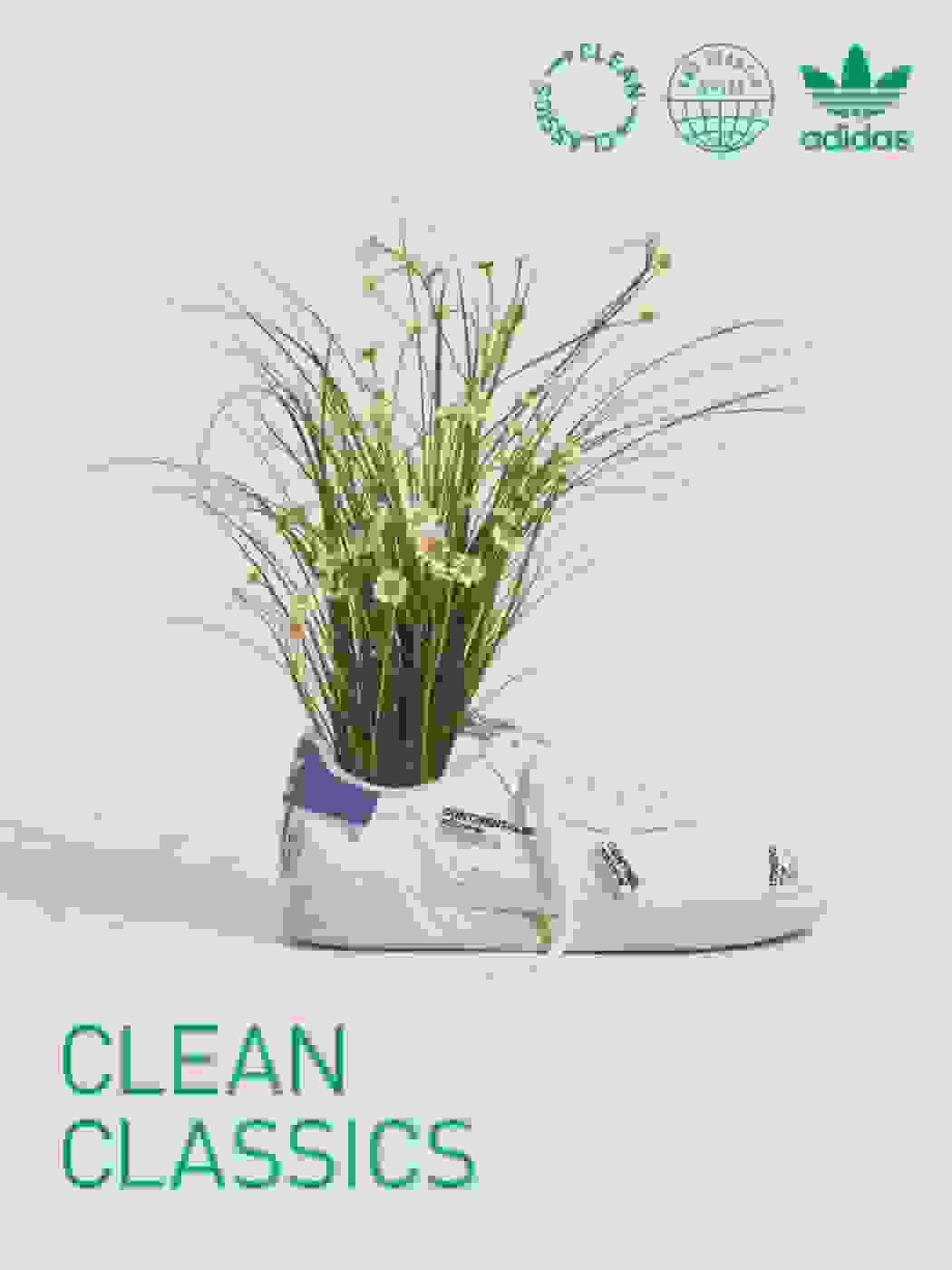 A Continental 80 sneaker from the Clean Classics collection is filled with a bouquet of white wildflowers.