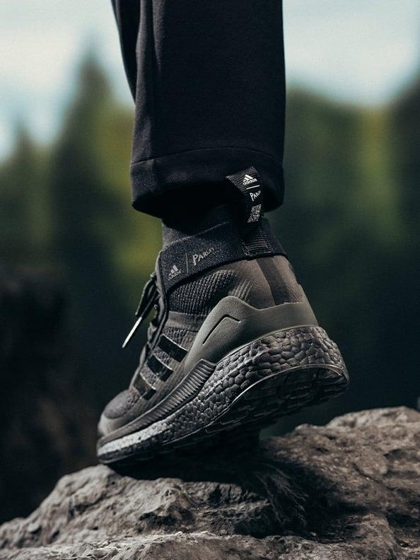 Terrex shoe back shot